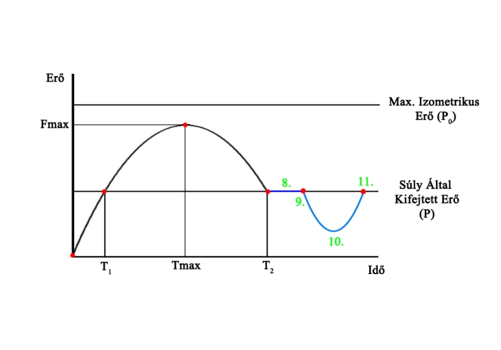 Force-Time_Curve2